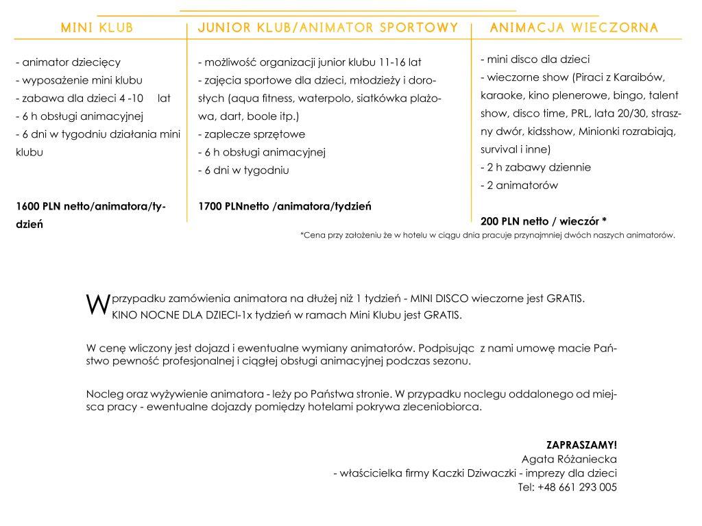 Mini klub 11 1 1024x768 - Animacje hotelowe